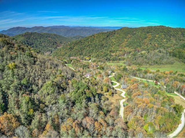 TBD White Thorn, Roan Mountain, TN 37687 (MLS #414417) :: Highlands Realty, Inc.