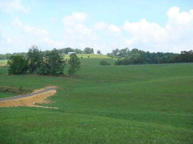 283 Mitchell Ridge Road, Jonesborough, TN 37659 (MLS #414550) :: Bridge Pointe Real Estate