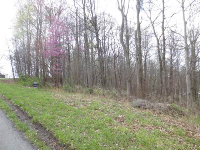 389 Mitchell Ridge Road, Jonesborough, TN 37659 (MLS #414553) :: Bridge Pointe Real Estate