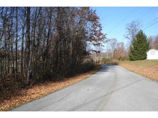 383 Mitchell Ridge Road, Jonesborough, TN 37659 (MLS #415293) :: Bridge Pointe Real Estate