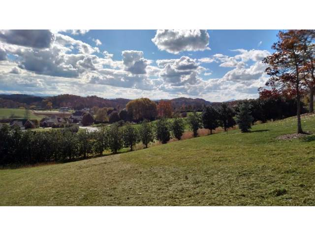 209 Old Island Trail, Kingsport, TN 37664 (MLS #415641) :: Conservus Real Estate Group