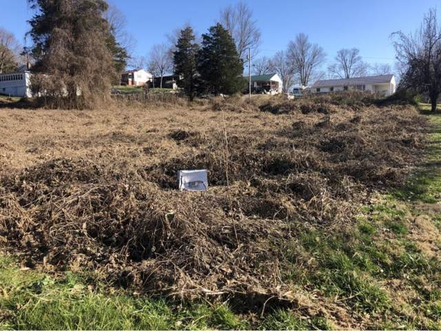 lot 0 Patricia Lane, Greeneville, TN 37743 (MLS #415992) :: Highlands Realty, Inc.