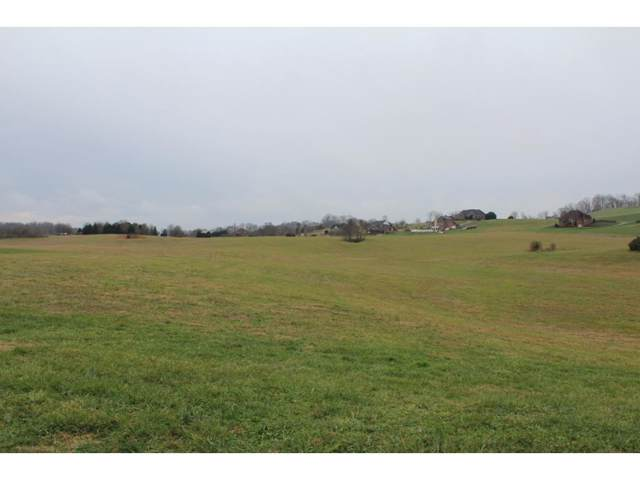 Lt 2 Waterstone Circle, Greeneville, TN 37745 (MLS #416248) :: Highlands Realty, Inc.