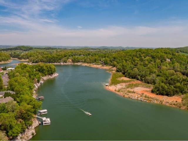 147 Lake Harbor Drive, Johnson City, TN 37615 (MLS #417441) :: Bridge Pointe Real Estate
