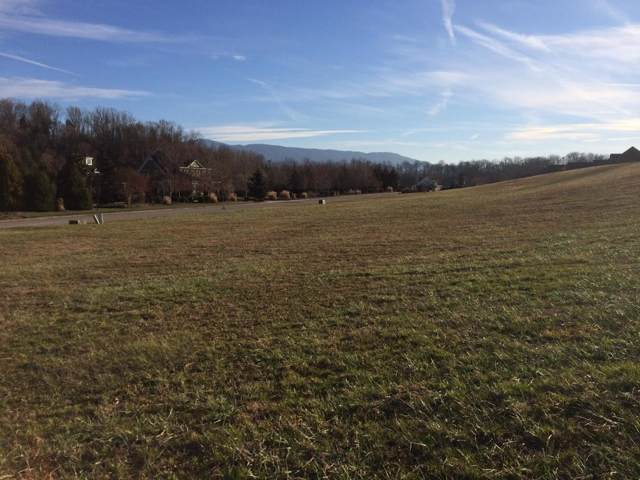 00 Waterstone Circle, Greeneville, TN 37745 (MLS #417690) :: Highlands Realty, Inc.