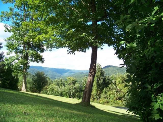 321 Roan Springs Road, Roan Mountain, TN 37687 (MLS #418557) :: Conservus Real Estate Group