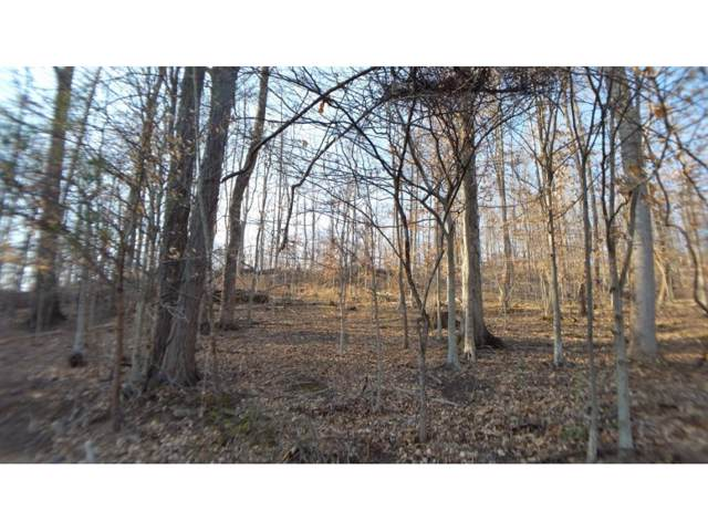 TBD Valley View Circle, Unicoi, TN 37692 (MLS #418932) :: Highlands Realty, Inc.