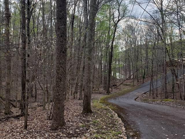 1516 Catoosa Drive, Mooresburg, TN 37811 (MLS #419858) :: Red Door Agency, LLC
