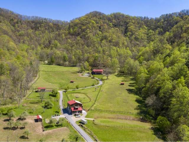 210 Chandler Cove Road, Erwin, TN 37650 (MLS #420694) :: Conservus Real Estate Group