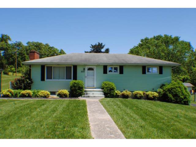 222 Florence Drive, Blountville, TN 37617 (MLS #421238) :: Conservus Real Estate Group