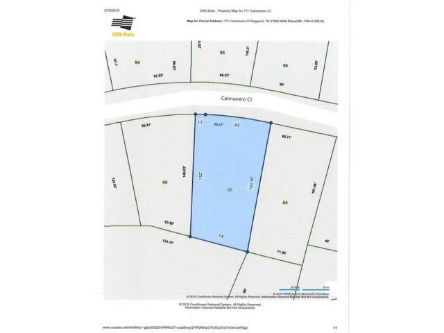 711 Cannonero Court, Kingsport, TN 37660 (MLS #421478) :: Bridge Pointe Real Estate