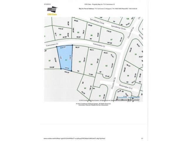 713 Cannonero Court, Kingsport, TN 37660 (MLS #421479) :: Bridge Pointe Real Estate