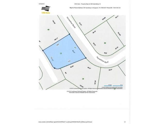 605 Spindletop Court, Kingsport, TN 37660 (MLS #421484) :: Bridge Pointe Real Estate