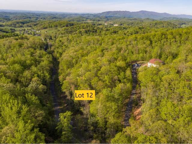 Lot 12 Pfeiffer Ridge Road, Johnson City, TN 37601 (MLS #421505) :: Red Door Agency, LLC