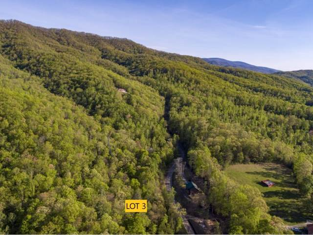 Lot 3 Pfeiffer Ridge Road, Johnson City, TN 37601 (MLS #421520) :: Red Door Agency, LLC