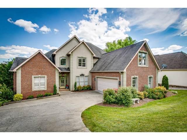 9 Lake Harbor Court, Johnson City, TN 37615 (MLS #422605) :: Highlands Realty, Inc.