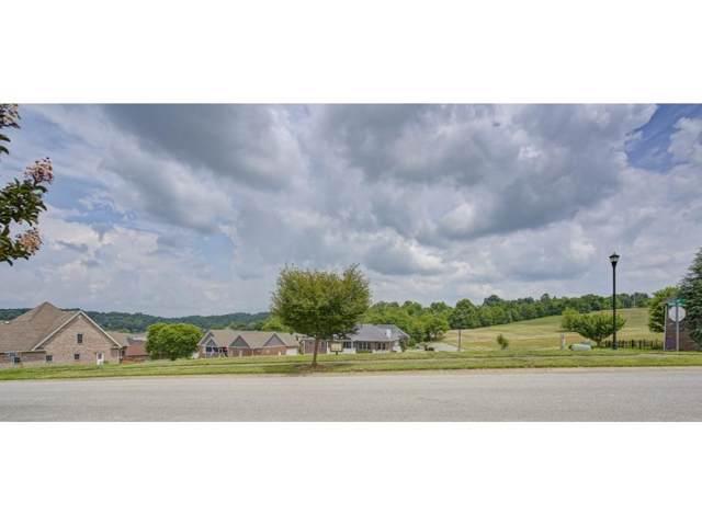 300 Harbor Approach, Johnson City, TN 37601 (MLS #422784) :: Highlands Realty, Inc.