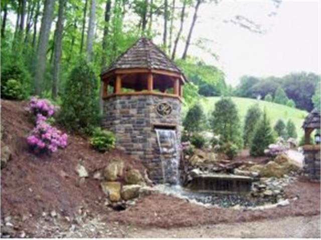 000 Watauga Falls Drive, Butler, TN 37640 (MLS #422887) :: Conservus Real Estate Group