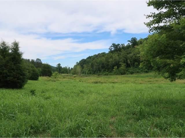 000 Butcher Valley Road, Rogersville, TN 37857 (MLS #422932) :: Highlands Realty, Inc.