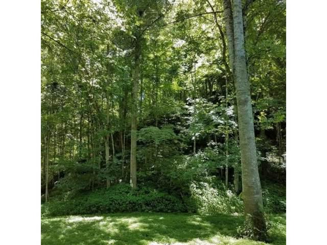 1484 Ben Bloomer Road, Sneedville, TN 37869 (MLS #423130) :: Conservus Real Estate Group