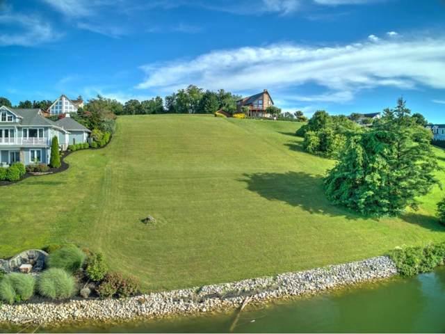 0 Harbour Point, Butler, TN 37640 (MLS #423191) :: Conservus Real Estate Group