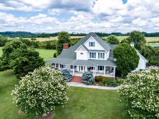 1631 Graves Road, Strawberry Plains, TN 37871 (MLS #423204) :: Conservus Real Estate Group