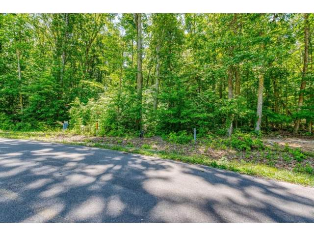 Lot 6 Allenwood Drive, Surgoinsville, TN 37873 (MLS #423417) :: Tim Stout Group Tri-Cities