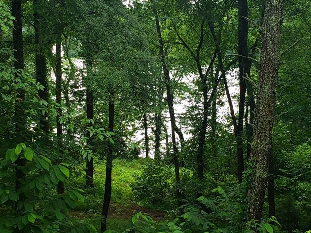 Lot 11 Walnut Bend Drive, Whitesburg, TN 37891 (MLS #423539) :: Bridge Pointe Real Estate