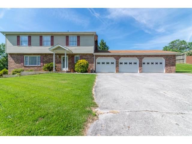 44 Stone Drive, Bristol, TN 37620 (MLS #423724) :: Conservus Real Estate Group