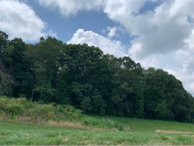3441 Allison Meadows Boulevard, Piney Flats, TN 37686 (MLS #424160) :: Conservus Real Estate Group