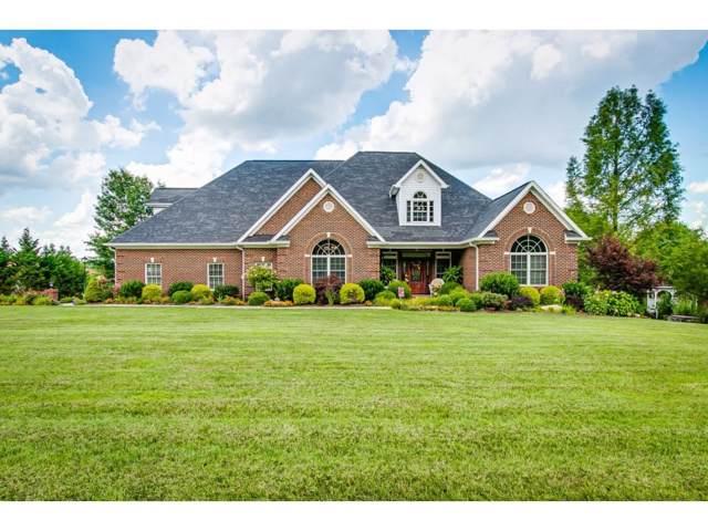 1300 White Street, Kingsport, TN 37664 (MLS #424261) :: Conservus Real Estate Group