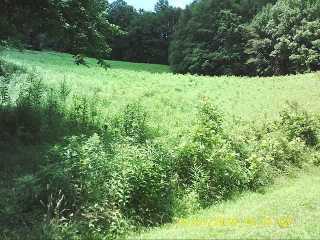 LOT 16 Eagle Ridge Road, Roan Mountain, TN 37687 (MLS #424389) :: Conservus Real Estate Group