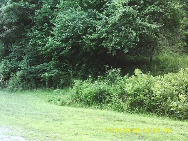 LOT 15 Eagle Ridge Road, Roan Mountain, TN 37687 (MLS #424390) :: Conservus Real Estate Group
