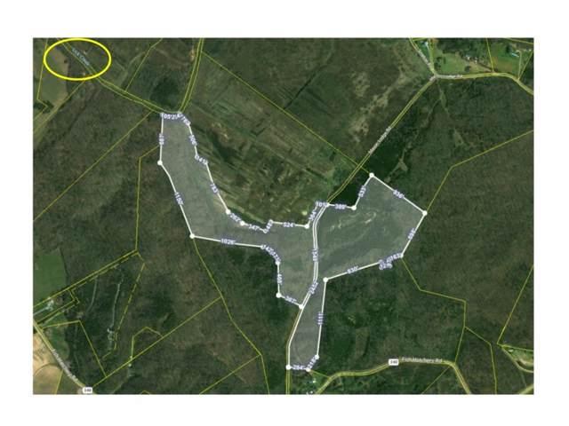 000 Mason Lodge Road, Mohawk, TN 37810 (MLS #424446) :: Conservus Real Estate Group