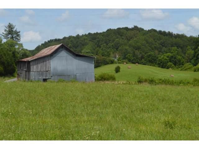 000 Tarpine Valley Road, Rogersville, TN 37857 (MLS #424561) :: Highlands Realty, Inc.