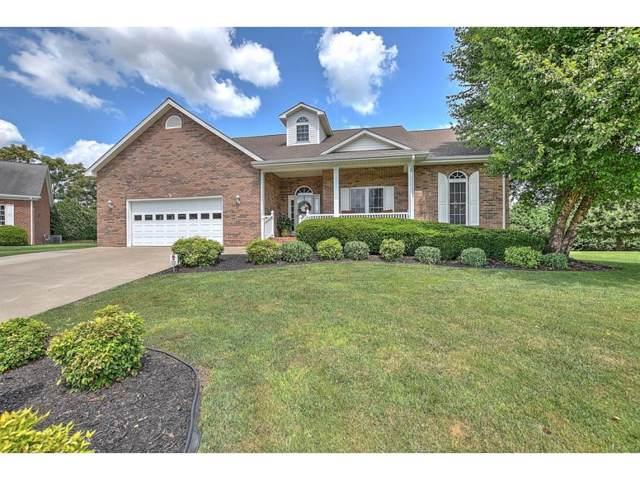 64 Dale Court, Greeneville, TN 37745 (MLS #424943) :: Conservus Real Estate Group