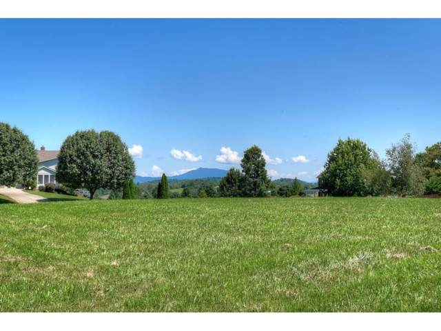 Lot#10 Chimney Top Lane, Chuckey, TN 37641 (MLS #424963) :: Conservus Real Estate Group