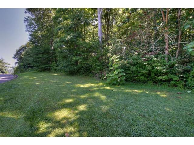 Lot #30 Western Gailes Lane, Chuckey, TN 37641 (MLS #424965) :: Conservus Real Estate Group