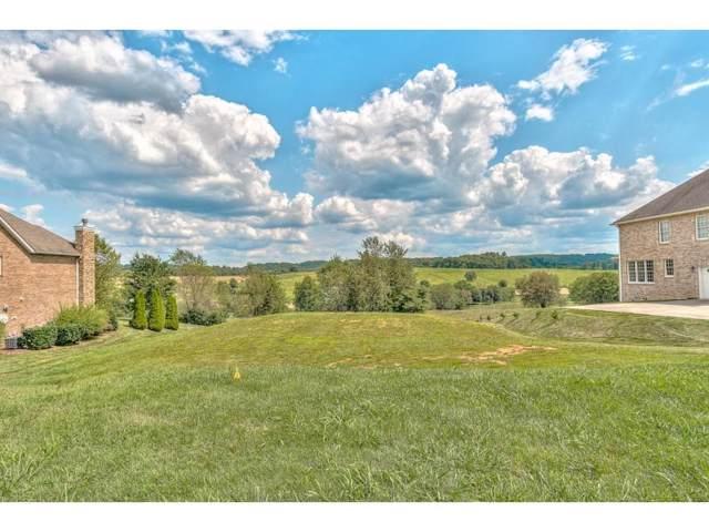 141 Laurel Ridge, Jonesborough, TN 37659 (MLS #425287) :: Conservus Real Estate Group