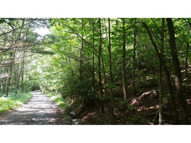 Lot 54 Rhoney's View Road, Newland, NC 28657 (MLS #425631) :: Highlands Realty, Inc.
