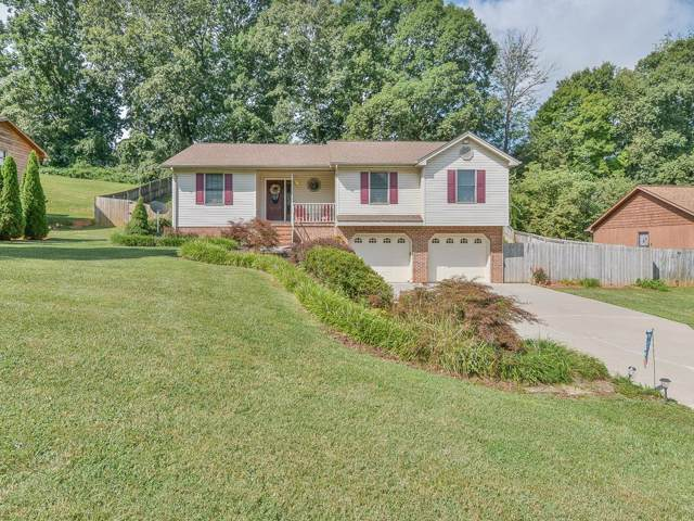 230 Cain Drive, Blountville, TN 37617 (MLS #425666) :: Conservus Real Estate Group