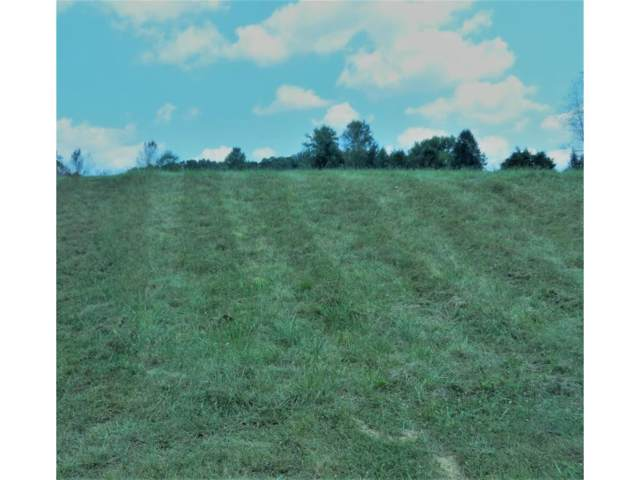 133 Forest Lane, Blountville, TN 37617 (MLS #425691) :: Bridge Pointe Real Estate