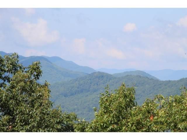 000 Callalantee, Mountain City, TN 37683 (MLS #425845) :: Tim Stout Group Tri-Cities
