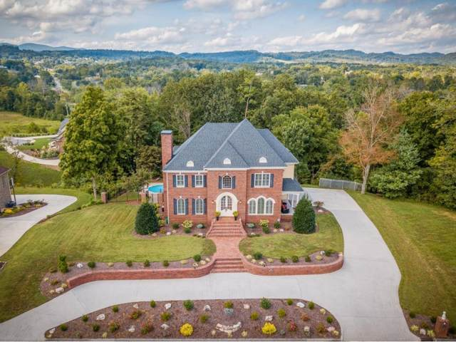 3016 Wandering Drive, Kingsport, TN 37660 (MLS #426268) :: Highlands Realty, Inc.