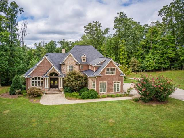 1035 Treetop Private Drive, Kingsport, TN 37664 (MLS #426414) :: Conservus Real Estate Group