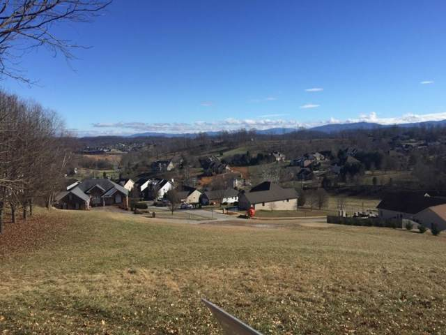 TBD Michaels Ridge Boulevard, Johnson City, TN 37615 (MLS #426562) :: Conservus Real Estate Group