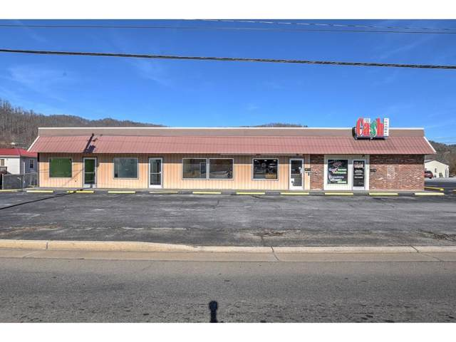 1131 Main Avenue Na, Erwin, TN 37650 (MLS #426605) :: Tim Stout Group Tri-Cities