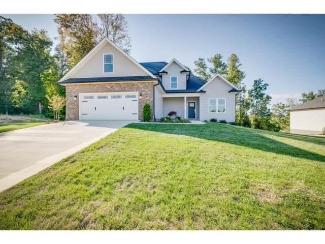 3078 Calton Hill, Kingsport, TN 37664 (MLS #426864) :: Conservus Real Estate Group