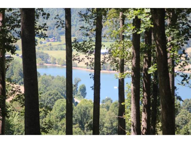 000 Draft Road, Lot #33, Butler, TN 37640 (MLS #426897) :: Bridge Pointe Real Estate