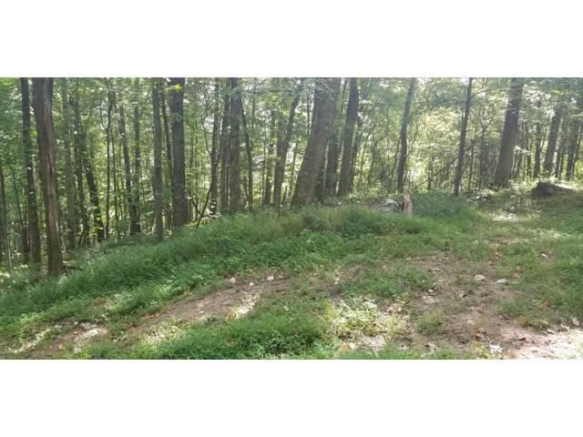 TBD Coal Pit Branch Road, Coeburn, VA 24230 (MLS #426971) :: Highlands Realty, Inc.
